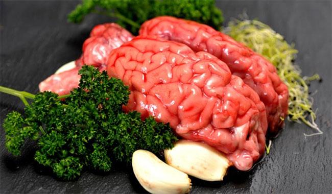 المخ البانية