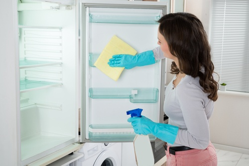 refrigerador-500x334