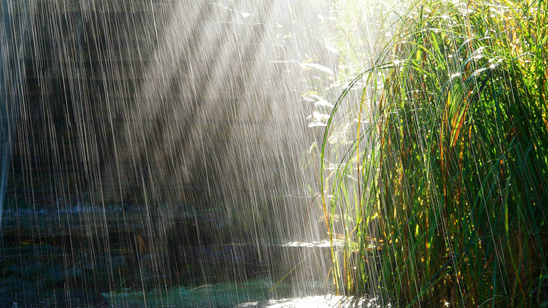 wallpapersxl-rainfall-nature-of-top-general-review-kreview-reviews-1404762-1920x1080